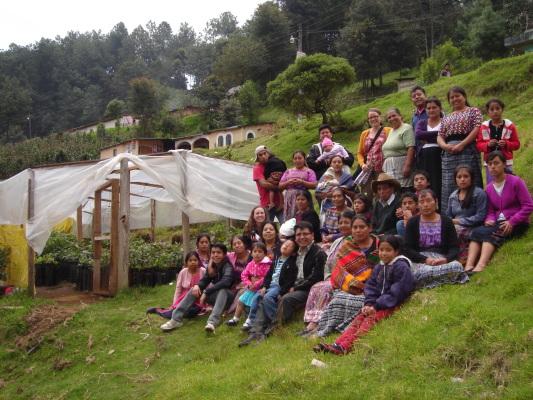 Naisryhmä San Andres Iztapassa avokadoviljelmien luona